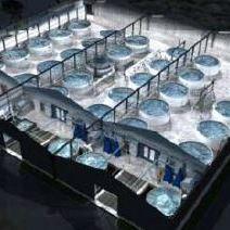 Nigeria:  Aquaculture